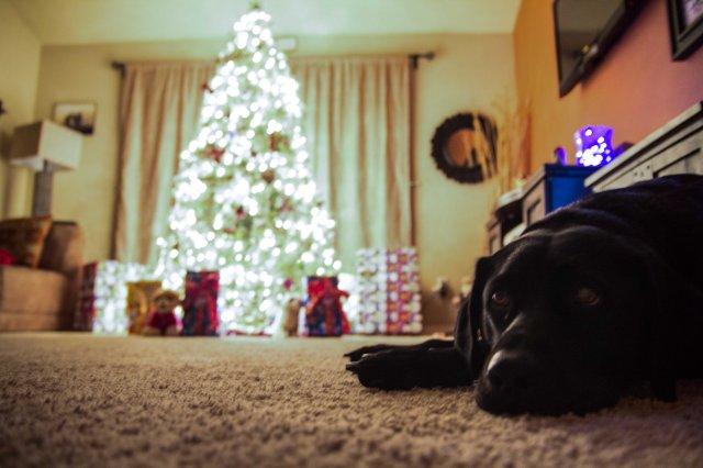 christmas-3a